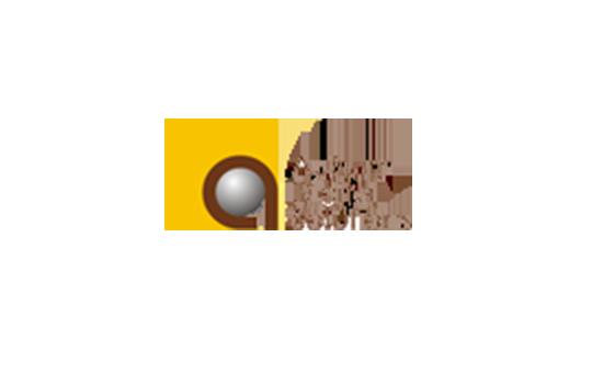 auburn-digital-solutions