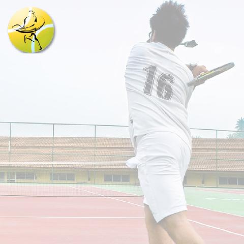 Zeeshan Ali Tennis Academy